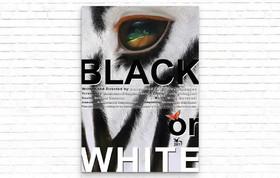 """Black or White"" in Elche Festival, Spain"