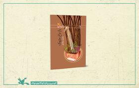 رمان «راز باغ متروک» برای چهارمین بار منتشر شد