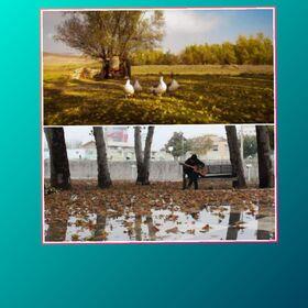 مربیان کانون آذربایجانغربی حائز ۲ عنوان تقدیری چهارمین مهرواره فصلی عکس کانون شدند