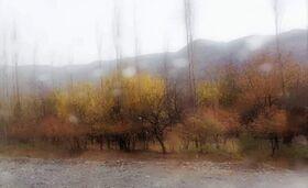 مربی هنری کانون کرمان برگزیده مهرواره عکس«پاییز در شهر من» شد