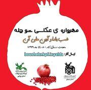 درخشش اعضا و مربیان کانون استان کرمانشاه در مهرواره عکاسی «شوچله»