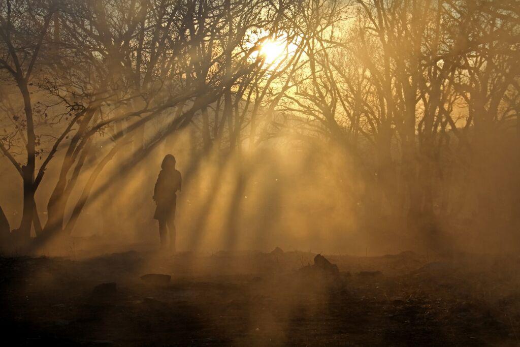 عضو کانون پرورش فکری کردستان برگزیده چهارمین مهرواره فصلی عکس کانون شد