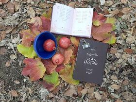 معرفی برگزیدگان مهرواره عکس شوچله کانون بوشهر
