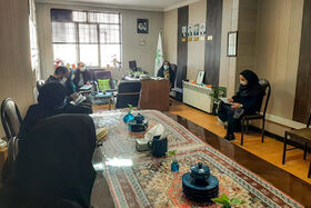 دومین جلسه کمیته کودک و نوجوان ستاد گرامیداشت دهه مبارک فجر استان همدان برگزار شد