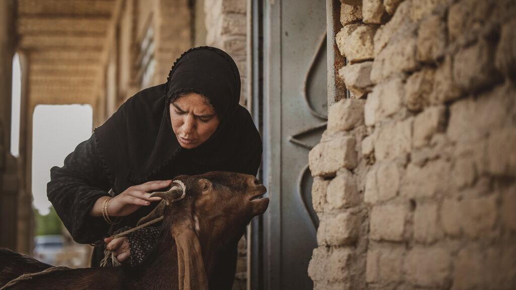 بازتاب درخشش فیلم سینمایی «یدو» در رسانهها
