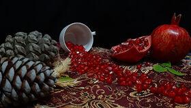 جشنواره یلدای کانون استان اردبیل برگزیدگان خود را شناخت