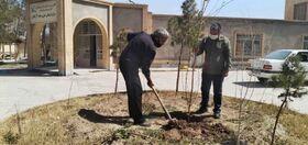 روز درختکاری در مراکز فرهنگیهنری سیستان و بلوچستان