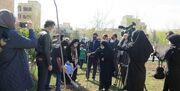 آیین کاشت نهال به نام نوجوان شهید و اعضای برگزیده در کانون استان قزوین