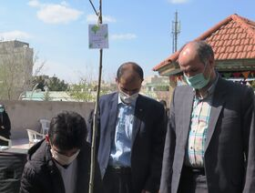 چند نما از آیین کاشت نهال به نام نوجوان شهید و اعضای برگزیده در کانون استان قزوین