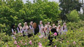 هنرنمایی اعضای کانون پرورش فکری در جشن رونمایی از گلاب سیستان