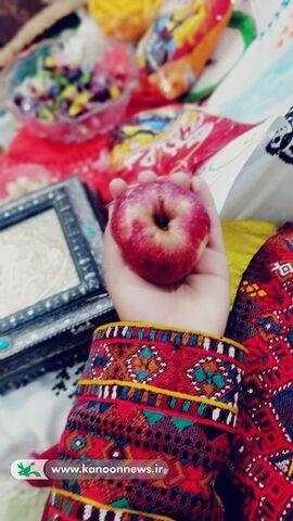 نرگس شُهلیبُر(سیستان و بلوچستان)