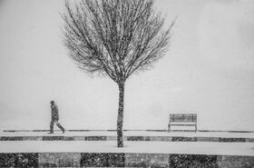درخشش کانون پرورش فکری استان کرمانشاه در پنجمین مهرواره فصلی عکس کانون