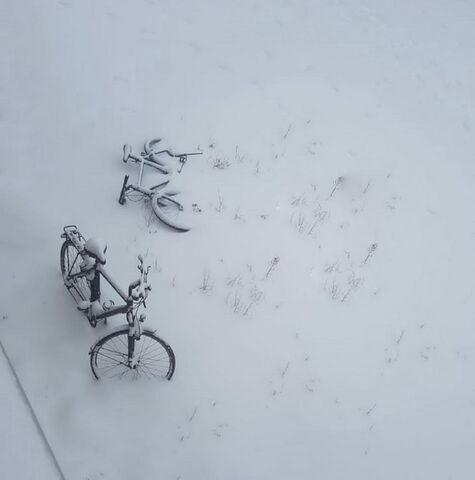 شیوا جمالوندی از ایلام برگزیده پنجمین مهرواره عکس فصلِ زمستان کانون