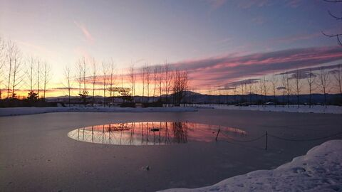آزاده آقا میربها از قزوین برگزیده پنجمین مهرواره عکس فصلِ زمستان کانون