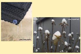 درخشش دو عضو کانون استان همدان در پنجمین مهرواره سراسری عکس فصل زمستان