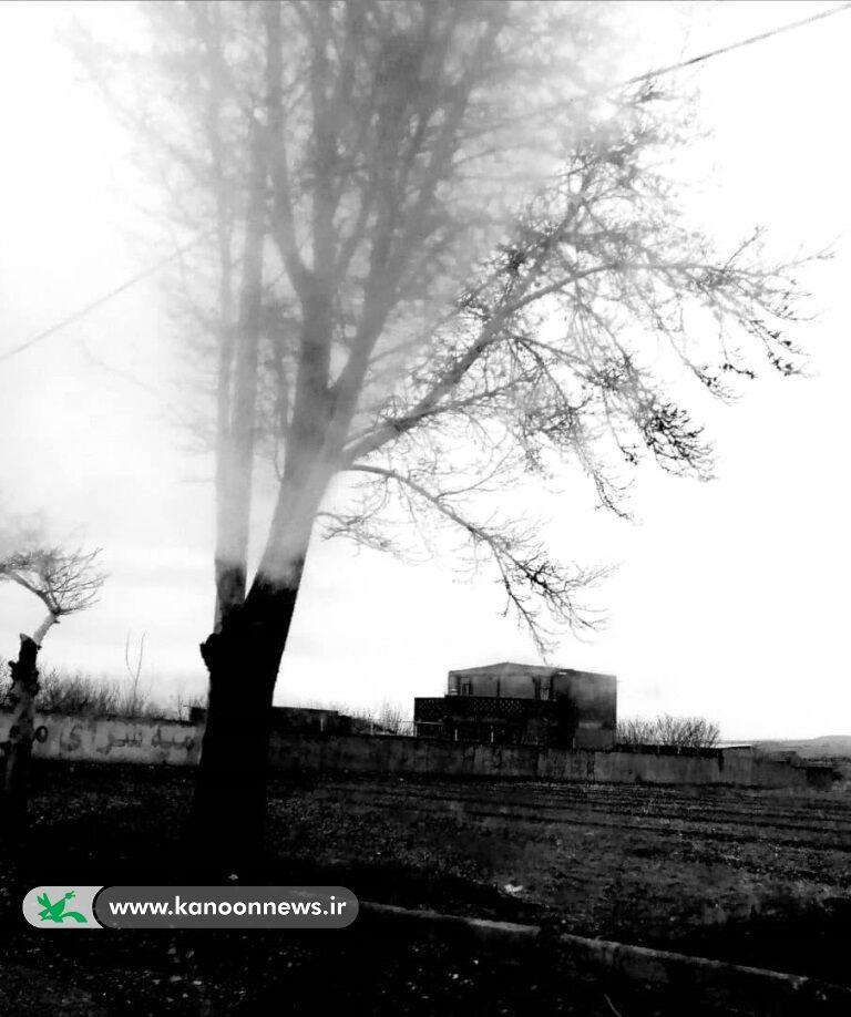 تقدیرشدگان کرمانی پنجمین مهرواره فصلی عکس کانون شناخته شدند