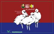 کتاب صوتی «لکلکها بر بام» کانون برگزیده شد