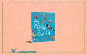 کتاب «پرندهها و آسمان» به مسابقه تصویرگری شارجه راه یافت