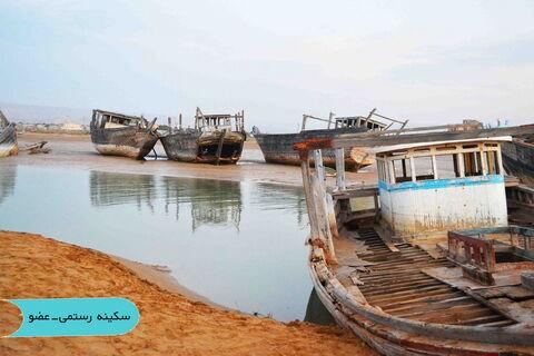 دریایپارس توسط عکاسان کانون بوشهر ثبت شد