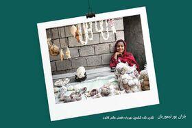 دو عضو انجمن عکاسان البرز در جمع تقدیرشدگان ششمین مهرواره فصلی عکس کانون