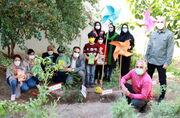 کاشت نهال توسط سرپرست اداره کل کانون استان تهران و اعضا، به یاد و نام هنرمندان