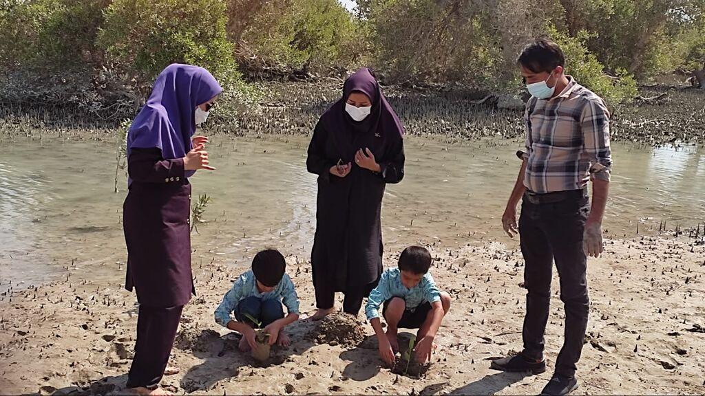 کاشت نهال حرا در جزیره قشم به یاد اولین مربی عکاسی کانون