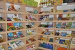 تعدادی از فروشگاههای محصولات کانون در تهران و استانها بازگشایی میشود